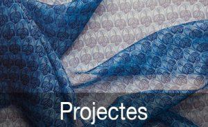 Imatge Apartat Didàctica: Projectes