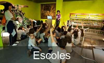 El museu per les escoles