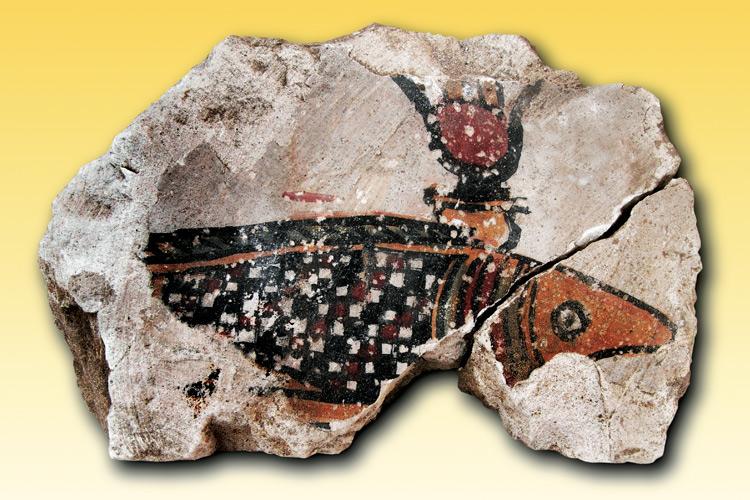 """Imatge exposició: """"Visions d'Egipte: Oxirrinc ahir i avui"""""""