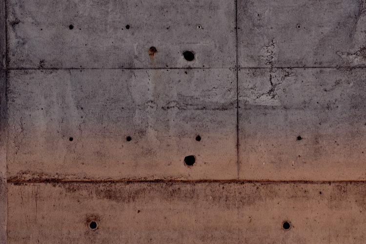 "Imatge detall exposició ""C-1313"" d'Olga Olivera-Tabeni"
