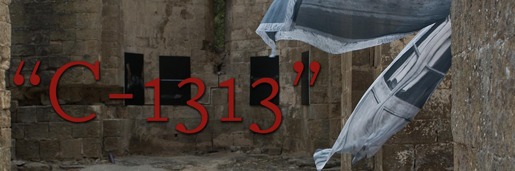 """Imatge exposició: """"C-1313"""" d'Olga Olivera-Tabeni."""