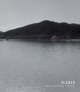 Portada catàleg exposició C-1313