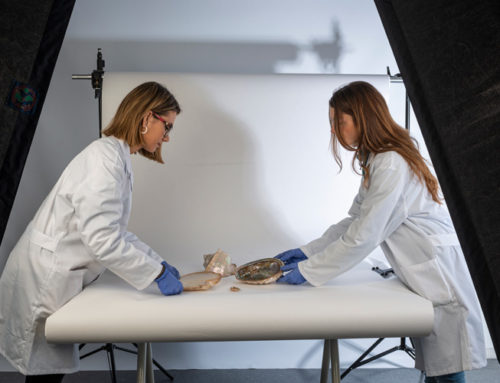 Alumnas en prácticas en el Museu Tèxtil